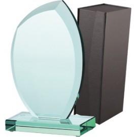 Trofeum szklane z etui G010