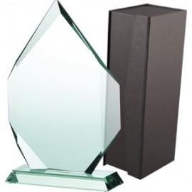 Trofeum szklane z etui G018