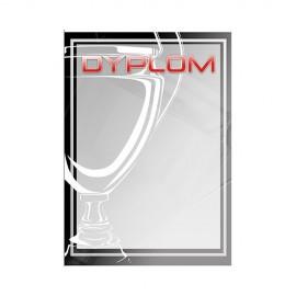 Dyplom papierowy - ogólny (puchar) DYP105