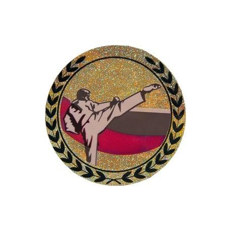 Emblemat hologramowy - karate AGM11