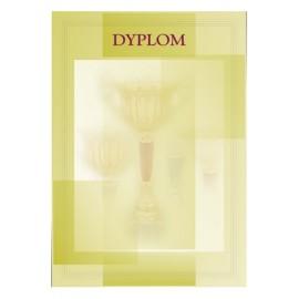 Dyplom papierowy - ogólny DYP7