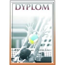 Dyplom papierowy - siatkówka DYP81