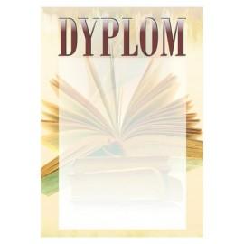Dyplom papierowy - szkolnictwo DYP87